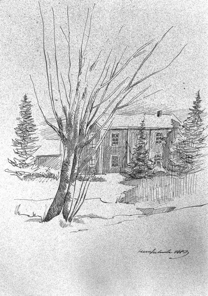 506 (Puu maatilan pihalla)