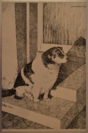 176 Kauttur-koira